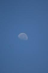 Lua de Prata