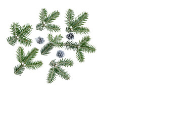 Christmas tree branches on white background, on left illustration. Great for christmas cards, banners, flyers, party posters. copy space on the middle