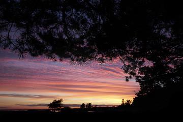 purple sunset at  northern beach