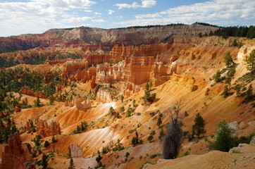 Parc national de Brice canyon  (Utha - USA)