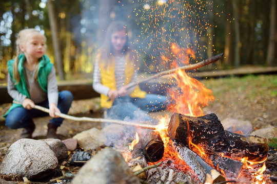 Cute little sisters roasting hotdogs on sticks at bonfire. Children having fun at camp fire. Camping with kids in fall forest.