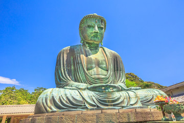 Kotoku-in Temple in Kamakura, Kanto region, Japan. The temple is famous for Great Buddha or Daibutsu, a monumental bronze statue of Amida Buddha. Popular landmark and icon of Japan.
