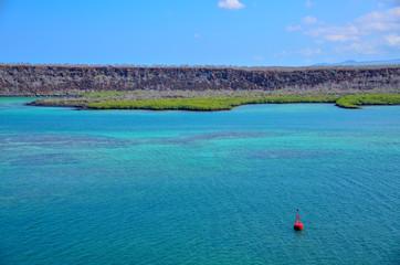 ガラパゴスの海