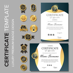 Professional Certificate template with badge
