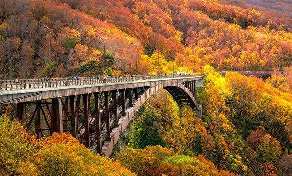Jogakura Bridge in Aomori Prefecture with Autumn Leaves background. A wonderful view of Jyogakura-keiryu Stream, a famous place in the Towada-hachimantai National Park.