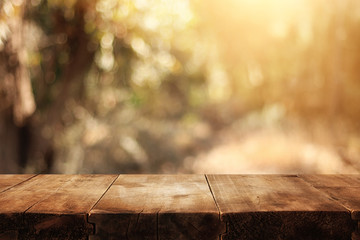 image of front rustic wood boards and background of forest.