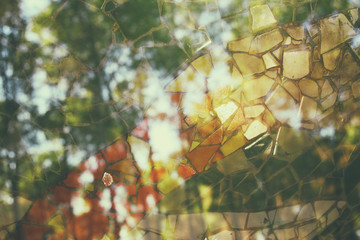 Double exposure and abstract image of trees at the forest and mosaic tiles.