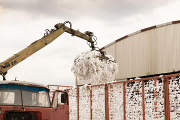 Greek seed cotton getting unloaded in the ginning mill
