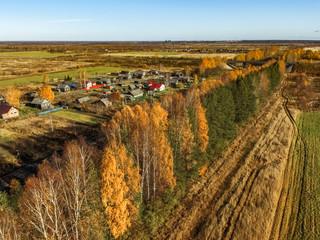 Golden autumn in the Northern village