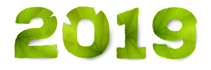 Vector 2019 inscription made from green leaves, isolated on white background