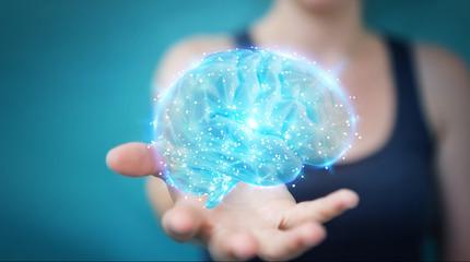 Wall Mural - Businesswoman using digital 3D projection of a human brain 3D rendering