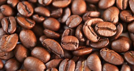 grains de café en gros plan