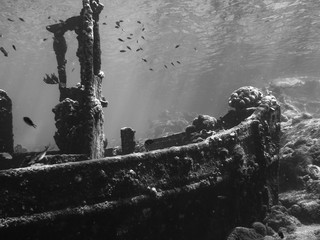 Tuinposter Begraafplaats Wreck Curacao