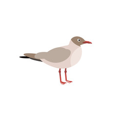 The seagull. Sea birds in the style of flat. Vector illustration.