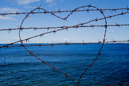 heart of barbed wire  with love from prison