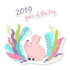 vector illustration little cute pig sitting in the meadow, symbol of the new 2019,cartoon design