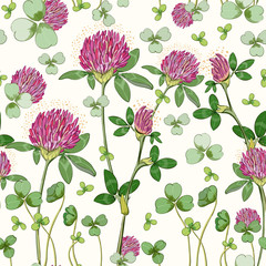 Floral seamless pattern, clover print on paper or textile. Clover background. Summer plants.
