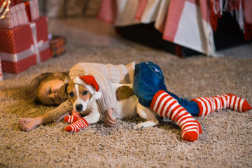 Little girl child at home at the fireplace with a dog Jack Russell Terrier and a New Year tree with gifts and luminous garlands celebrates Christmas