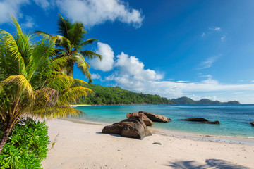 Fototapete - Exotic sandy beach with palm and a sailing boat in the turquoise sea on Seychelles paradise island. Summer vacation and travel concept.