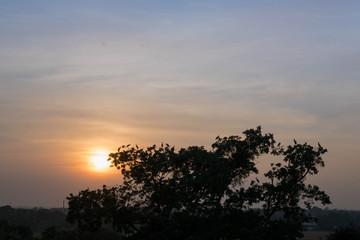 太陽・夕焼け・サンセット・地平線・鳥・影