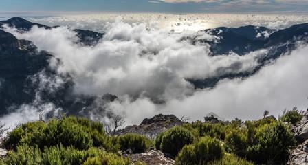 Wonders of Madeira