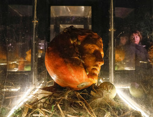 A woman is reflected in glass at an exhibition of figures carved out in pumpkins in Moscow State University's Botanic Garden (Apothecary Garden)  in Moscow
