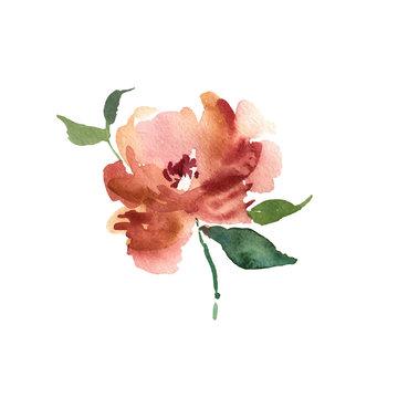 Watercolor flower. Orange beautiful hand drawn rose. Design for