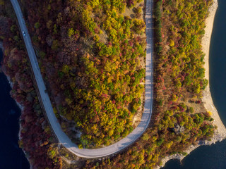 Road in the autumn forest aerial view.
