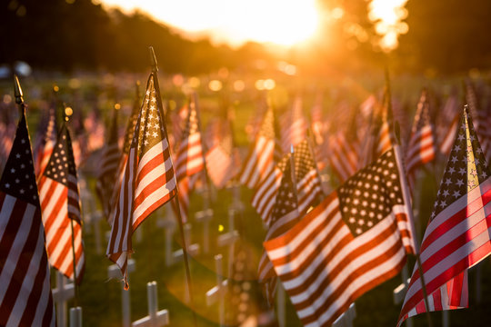 Field of flags at Sunset