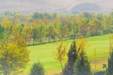 President Park. Rest zone. Alley in the garden. Tree plantation. Golf Course in Kazakhstan
