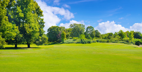 Summer park with deciduous trees and broad lawns. Wide photo.