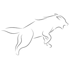 Black line wolf on white background. Hand drawn linear sketch. Vector graphic animal.