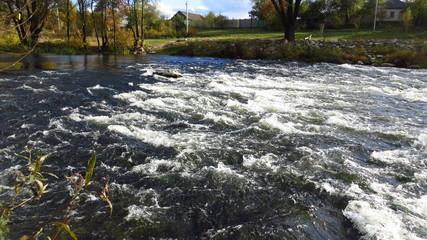 Deurstickers Bos rivier Rough River