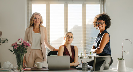 Successful startup business partners in office