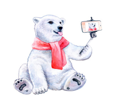 Funny polar bear with a red scarf - Self picture isolated on white background. Selfie stick in his hand. Funny bear are taking a selfie with smartphone camera. White bear taking a selfie. Watercolor.