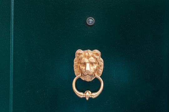 Decorative gilded lion head door knob, close view.
