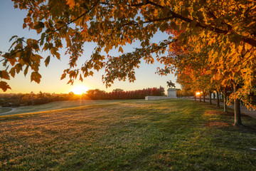 October 20, 2018 - St. Louis, Missouri - The sunrise and fall foliage around the Apotheosis of St. Louis statue of King Louis IX of France on Art Hill in Forest Park, St. Louis, Missouri.