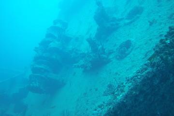 Mercedes ship wreck off coat of Fort Lauderdale