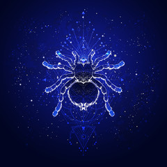 Vector illustration with hand drawn spider tarantula and Sacred geometric symbol against the starry sky. Abstract mystic sign.