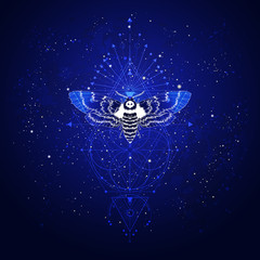 Vector illustration with hand drawn butterfly Dead head and Sacred geometric symbol against the starry sky. Abstract mystic sign.