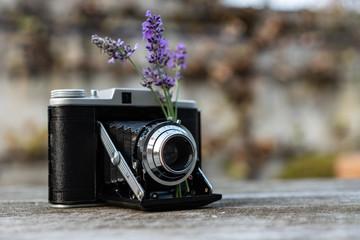 Vintage Kamera steht auf dem Tisch mit Sträußchen Lavendel verziehrt