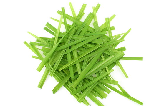 lemongrass Cymbopogon or citronella grass plant cut leaves in white background