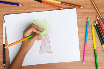 Child draws a pencil drawing of the Tree