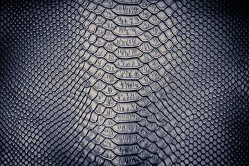 Luxury snake skin texture Wall mural