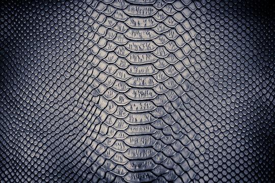 Luxury snake skin texture