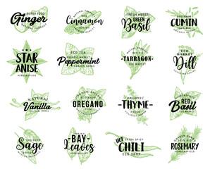 Organic herbs, spices seasonings sketch lettering