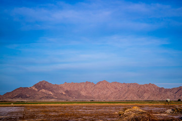 Gila Mountains in Yuma at Southwestern Arizona