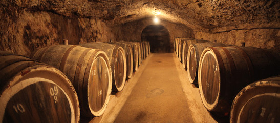 Old oak barrels in an ancient wine cellar