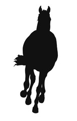 A silhouette of a horse full face.