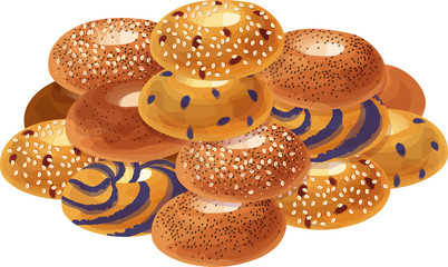 Cinnamon Sugar, Poppy Seed, Everything, Blueberry, Cranberry and Oat, and Blueberry Swirl Bagels Grouped in a Pile. Isolated vector illustrations.